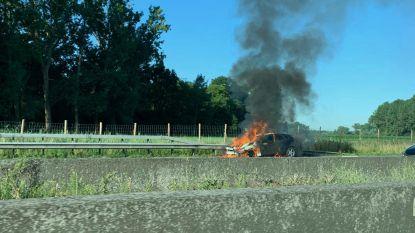 Auto uitgebrand op pechstrook E40