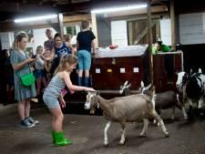 Schoolklas in Apeldoorn op de vlucht voor onweer