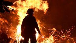 Californië zet ruim duizend brandweerlieden in