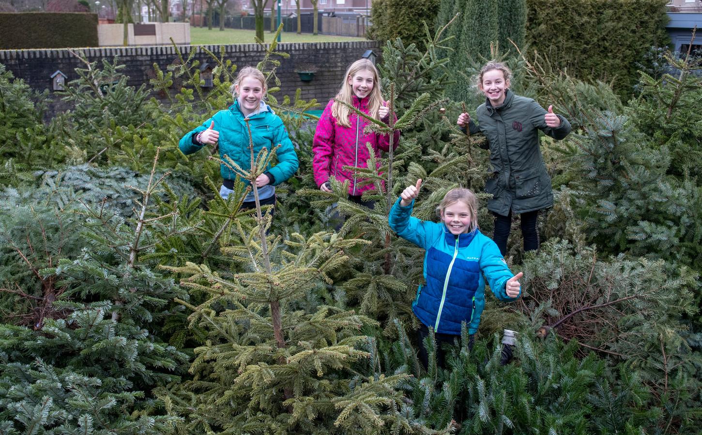 De kinderen van de familie Van den Bosch haalden vorig jaar in Veenendaal 157 kerstbomen op. Dit jaar gaat dat feest niet door.