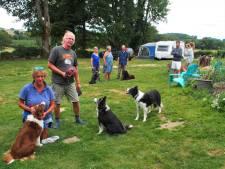 Op deze camping mogen kinderen er niet in, honden wél
