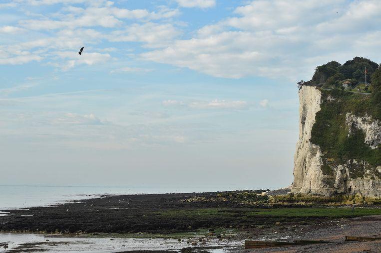 Franky Zapata op zijn flyboard vlak voor de landing op het strand van St. Margaret's Bay bij Dover.  Beeld AFP