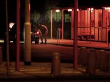 PvdA onderzoekt verbod op hoerenlopen
