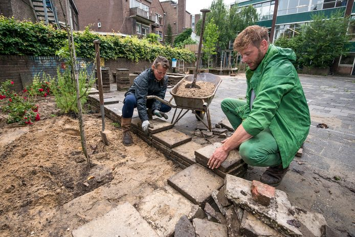 Tegels eruit, groen erin, zoals op het voormalige schoolplein van De Rank in Arnhem: Piet van Dijk van Vereniging Stadsschoon ziet dat graag meer gebeuren in Arnhemse wijken. Archieffoto.