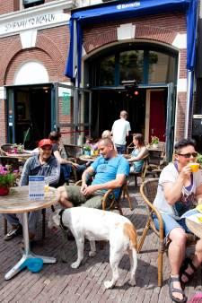 Henk Westbroek zoekt wanhopig naar Piet, de huiskat van Stairway: 'Volop bier voor de vinder'