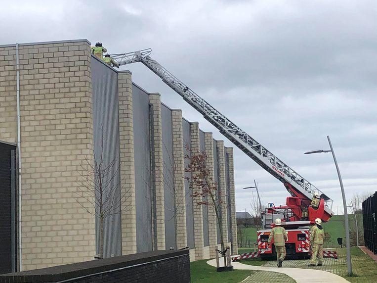 Brandweerpost Geraardsbergen kreeg tot dinsdagmiddag 79 interventies te verwerken.