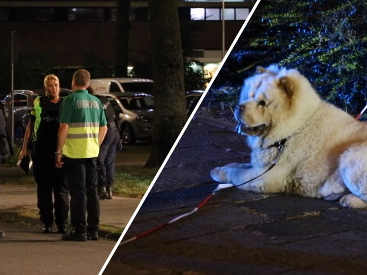 Wisam (37) doodgeschoten tijdens het uitlaten van zijn hond