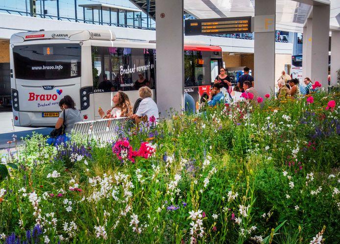 Het busstation in Tilburg.