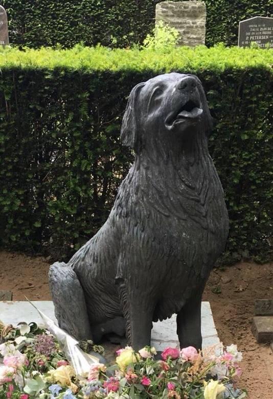De hond op het graf, meteen  na de terugplaatsing op 18 mei. In het weekend daarna is de kop eraf getrokken en gestolen.
