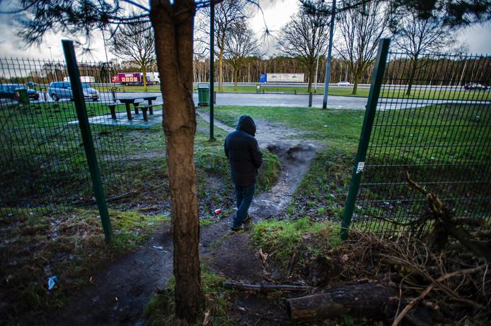 Een gat in het hek van Rijkswaterstaat biedt toegang tot het homobosje van Leikant langs de A58.