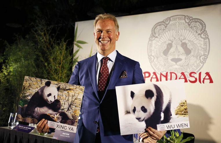 """Boekhoorn vindt de komst van de Chinese panda's Wu Wen en Xing Ya in zijn eigen dierentuin """"mijn mooiste deal ooit"""". Het noodlijdende Ouwehands Dierenpark had er meteen duizenden bezoekers bij. Beeld ANP"""