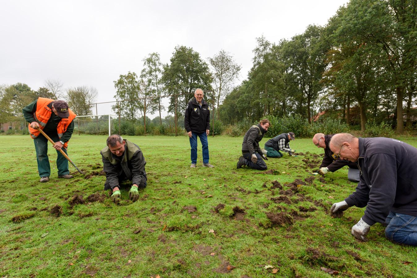 In allerijl wordt gepoogd het voetbalveld dat is omgewoeld door wilde zwijnen te herstellen. Staand in het midden Toon Kox.
