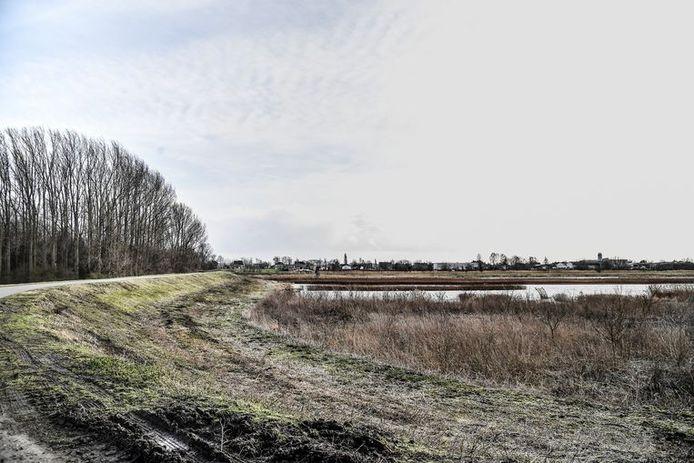 De Paardenweide in Berlare is beschermd gebied,maar toch wordt er nog steeds gejaagd en schrikt het de vogels op.
