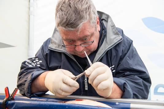 Met uiterste precisie bereidt Gerard de Laak de operatie voor.