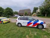 Koe slingert boerin over hek in De Heurne: slachtoffer zwaargewond naar ziekenhuis