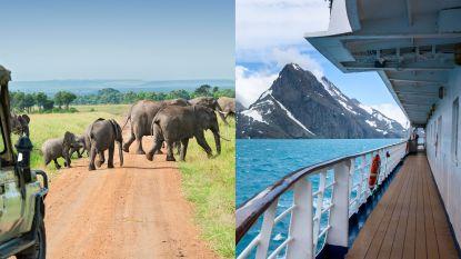 Safari in Kenia of cruise naar Antarctica? Deze reisorganisaties specialiseren zich in unieke reizen