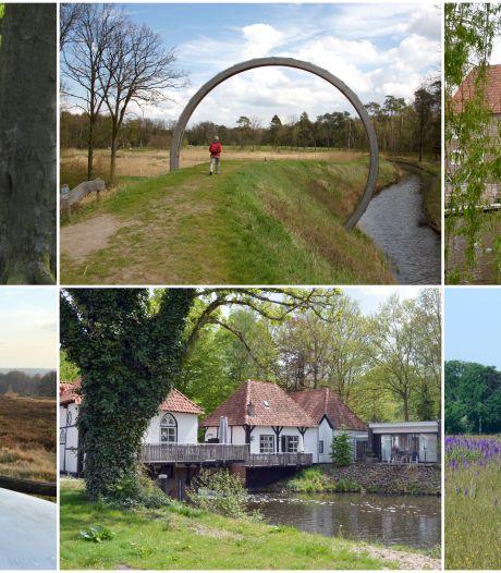 Dit zijn de acht prachtige wandelroutes door Twente en de Achterhoek van Truus Wijnen