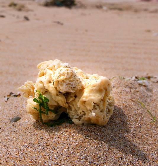 Nederlandse stranden raken regelmatig vervuild met paraffine - een wax-achtige substantie - uit schepen die hun afvalwater op zee lozen.