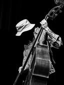 Een van de geportretteerden: bassist Alessandro Fongaro, uit het Sun Mi Hong Quintet.