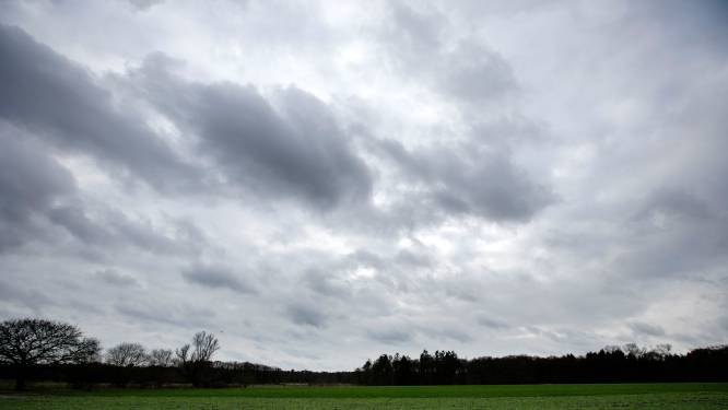 Raad Waalre kritisch op bestemmingsplan nieuw landgoed Achtervoorde: 'Meer zekerheid nodig'