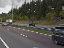 Houtrot: Kunstwerk Halve Bollen langs snelweg A50 wordt vervangen