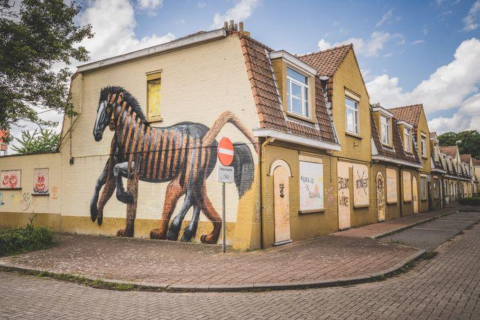 Kunst en verloedering in één beeld. Cee Pil versus graffiti-tags op dichtgetimmerde huizen