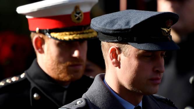 """Prins William niet blij met uitspraken van Harry: """"Hij voelt zich helemaal niet gevangen"""""""