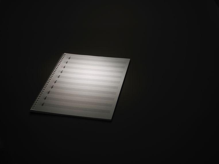 Peter-Jan Wagemans schreef een boek hoe hoe modern-klassieke componisten te werk gaan. Beeld Getty Images