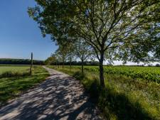 Felle discussie rond Auvergnepolder: 'Te weinig regie gemeente, strategie Dorpsraad onhandig'