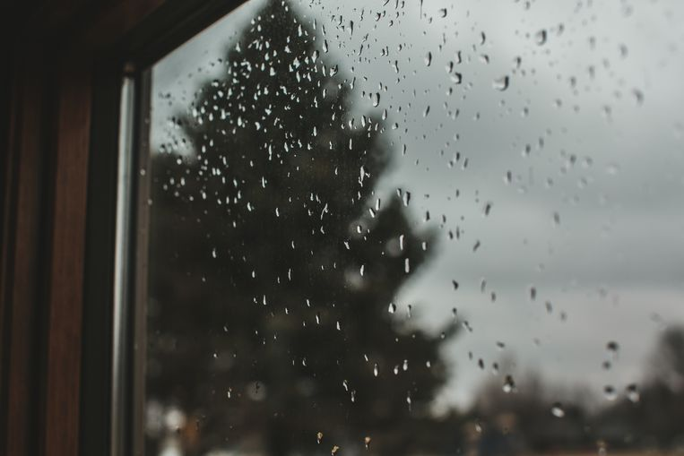 Looking throw a window at a gray overcast sky and a tall dark pine tree as rain drops cling to the window pain. Beeld Getty Images