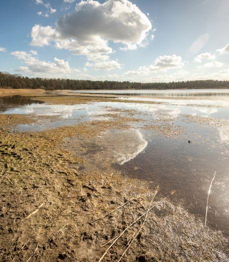 Grootmeer tussen Wintelre en Vessem valt in rap tempo droog. De oorzaak? Een bergje slib