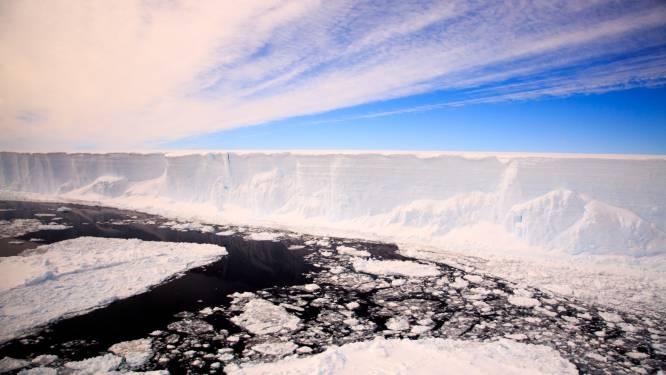 Grootste ijsberg ter wereld breekt verder af in 'kleine' ijsbergen (en dat is goed nieuws voor dit eiland)