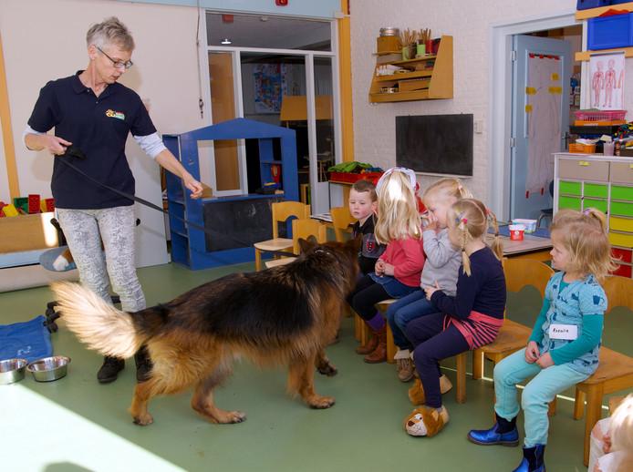 Hondenles in Oudleusen.