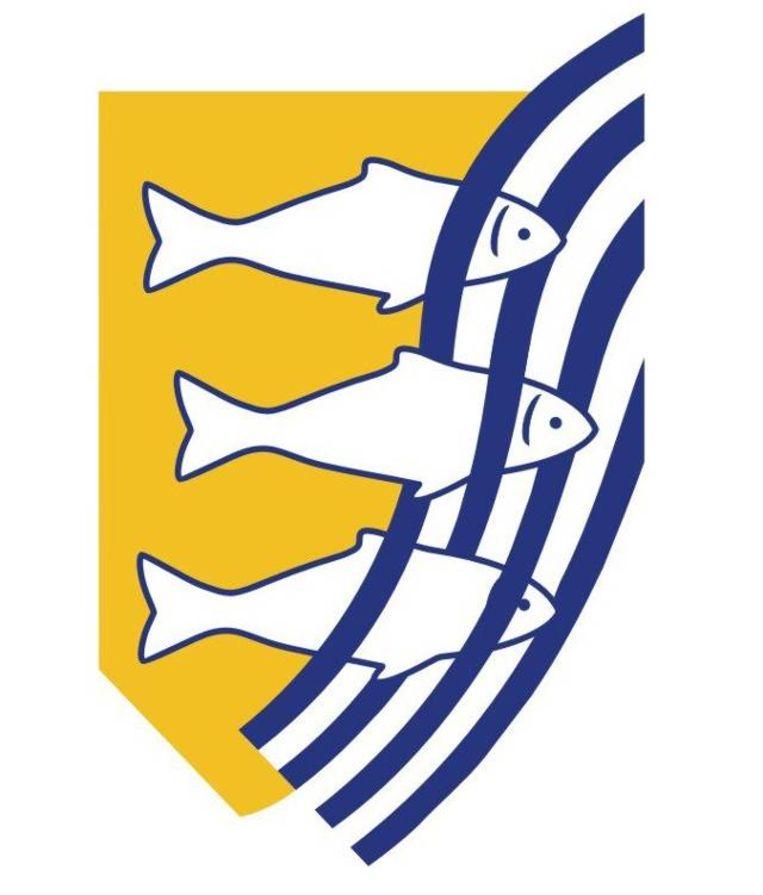 Logo van de AIVD, de Algemene Inlichtingen- en Veiligheidsdienst. Beeld AIVD