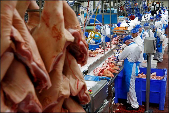Medewerkers van varkensslachterij Vion in Boxtel aan het werk.