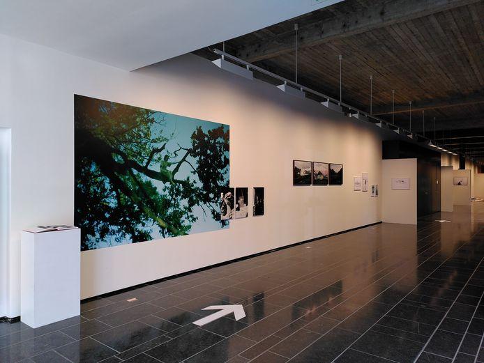Er loopt een nieuwe expo, genaamd 'Ondersporen', in het Cultuurcentrum Hasselt.