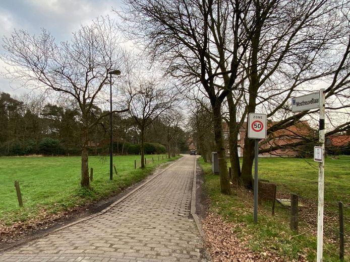 De Mostheuvellaan is een zijstraat van de Antwerpsesteenweg.