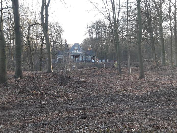 De omgeving van Villa Vredelust na de bomenkap, februari 2019.