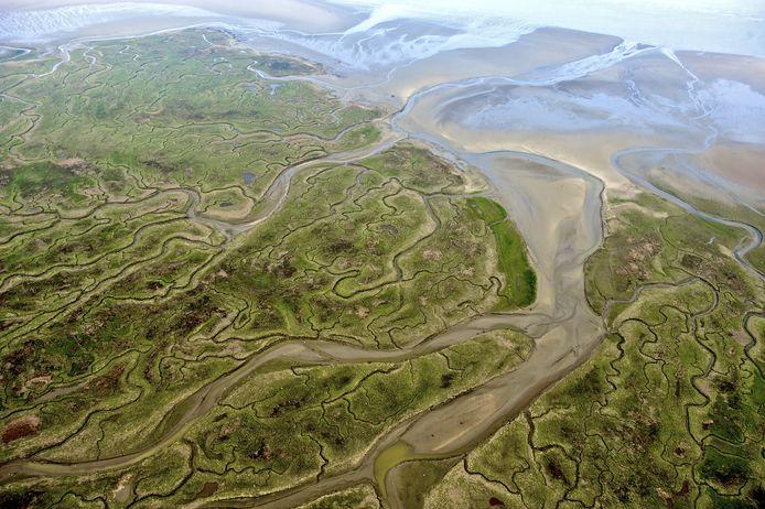 Het Verdronken Land van Saeftinghe naast de Hedwigepolder is een schorrengebied in de Westerschelde.