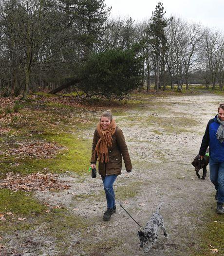 Rust in de kraamkamer van de natuur: 'Grote drukte is echt probleem, zeker nu broedseizoen aanbreekt'