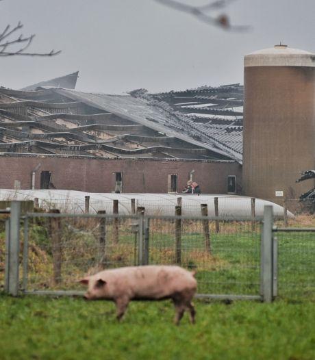 Stalbrand Biezenmortel begon waarschijnlijk in werktuigloods: 'De brand is immens geweest'