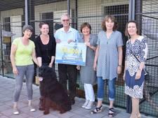 Lionsclub Middelburg sponsort nieuwe auto Dierenasiel Walcheren