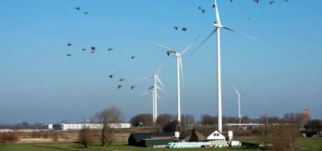 Het geruzie over windmolens is al begonnen in de coalitie van Wijk bij Duurstede