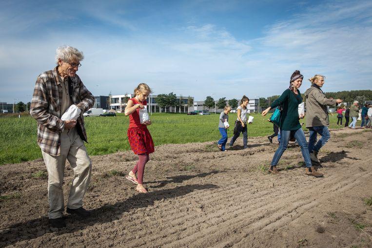 In de Lutkemeerpolder wordt al langer actie gevoerd voor behoud van De Boterbloem in de Lutkemeerpolder. Beeld Dingena Mol