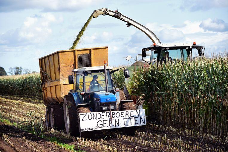 Boer haalt zijn maisoogst binnen en protesteert tegelijk tegen het stikstofbeleid.  Beeld Marcel van den Bergh