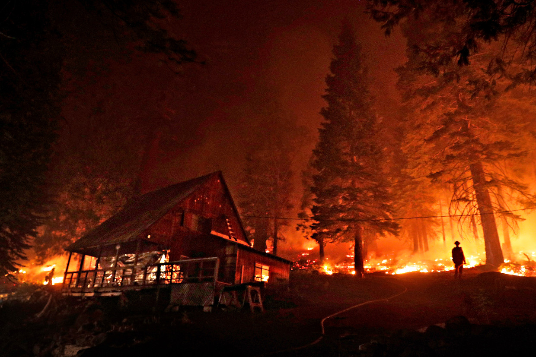 Nu bosbranden vaker voorkomen, kunnen bossen zich tussen de branden niet meer herstellen.  Beeld San Francisco Chronicle via Gett