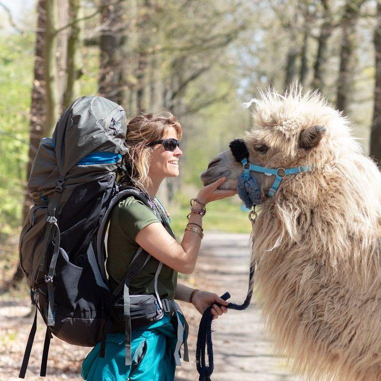 Om haar boek te promoten loopt Tamar Valkenier met een kameel door Nederland. Beeld Tamar Valkenier