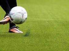 Kunstgras sportparken Hasselt en Zwartsluis komt, tot verbazing CDA, uit België en niet uit lokale fabrieken