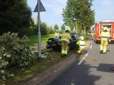 Automobilist rijdt boom uit de grond in Groesbeek