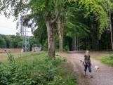 'Geen run op dierentehuis Arnhem voor lockdownhond'